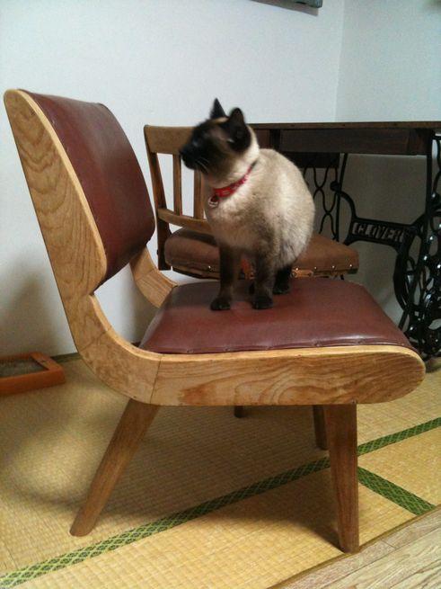 古びた椅子2