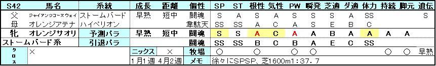 引退パラ検証-サオリ