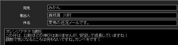 S411002-1.jpg