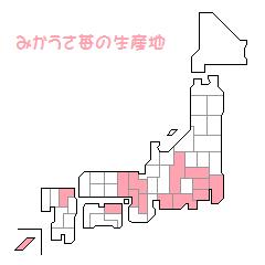 みかうさ苺生産地20110812