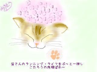 snap_mikimou_20103382234.jpg