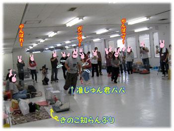第4回うさぎの運動会4