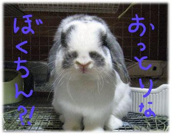 kimori26.jpg