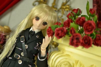 薔薇とドール1
