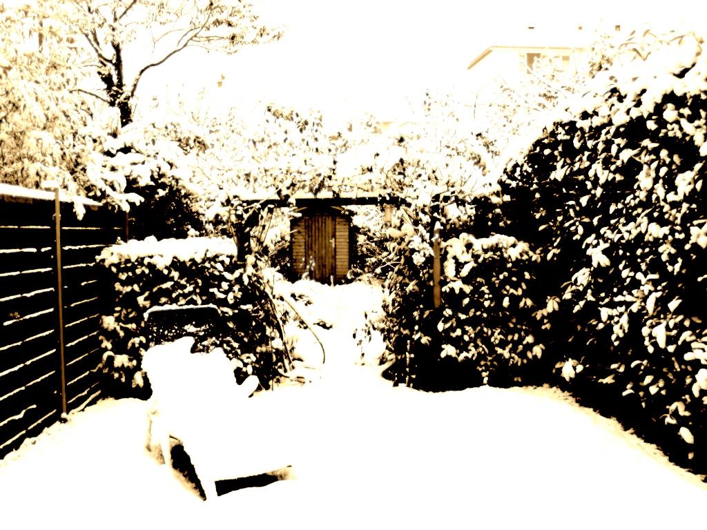 雪景色ブログ
