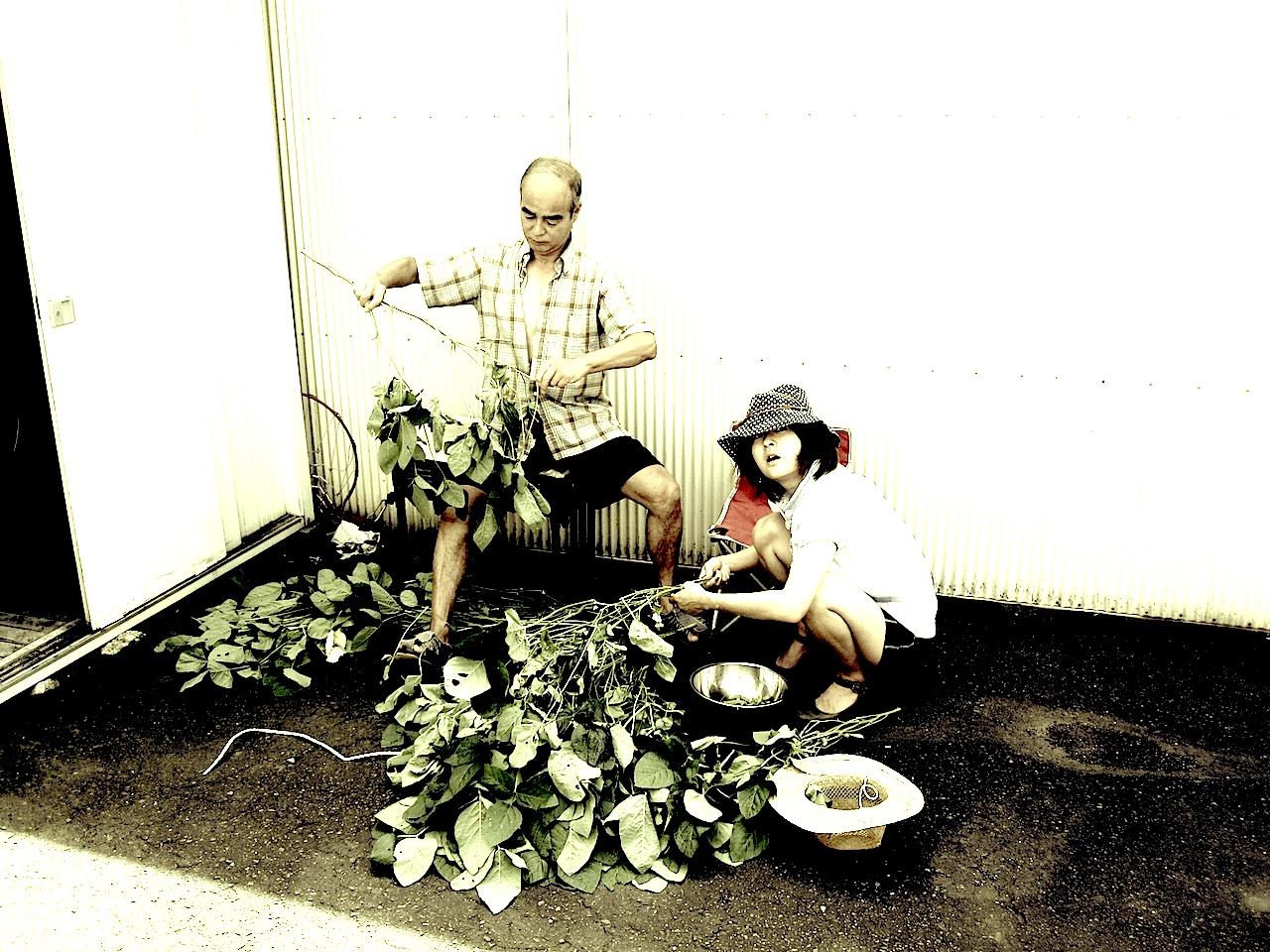 枝豆とりブログ