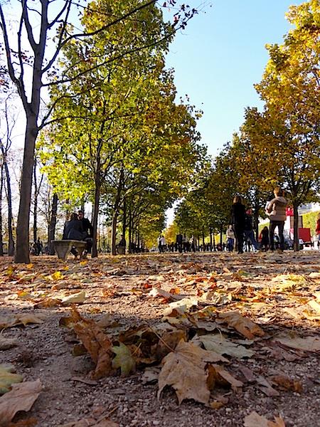 automne9.jpg