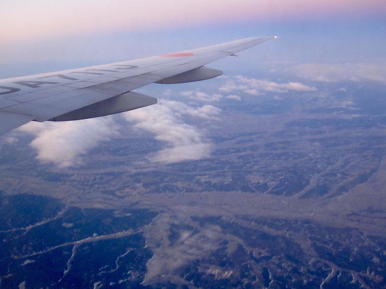 plainwings1.jpg