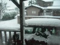冬ロハ 002