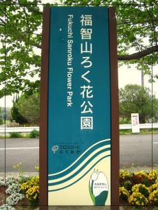 福智山ろく花公園9