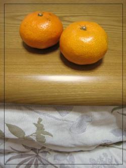 IMG_4882_convert_20110103010108.jpg