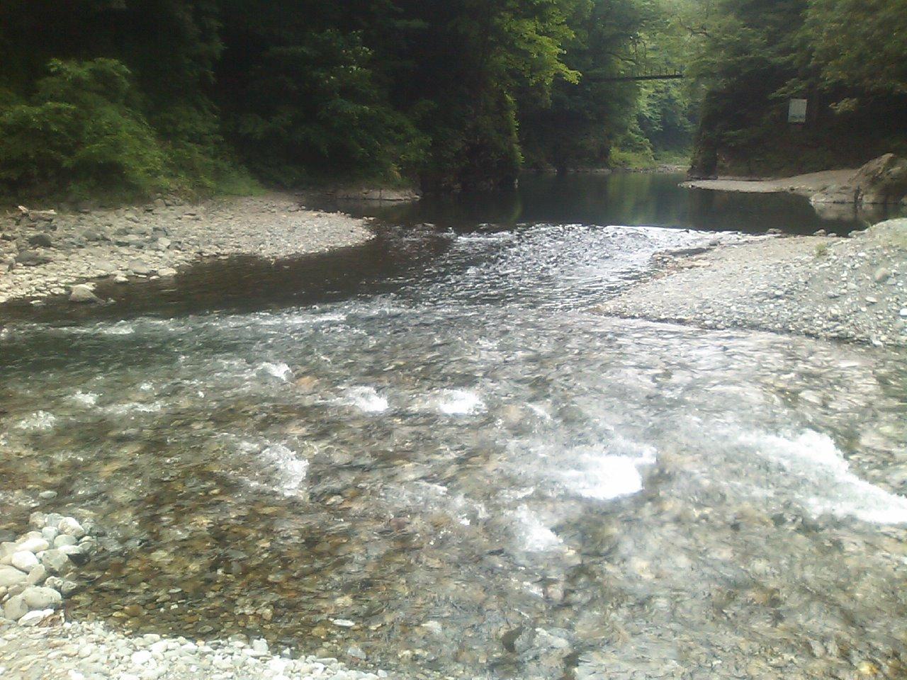20110522_川の合流