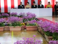 2011.3.24 泉川小学校卒業式2