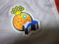 2011.8.25 県議会野球同好会ユニホームのマーク