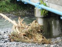 2011.9.11 客谷川2