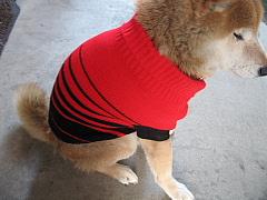 ミック赤セーター