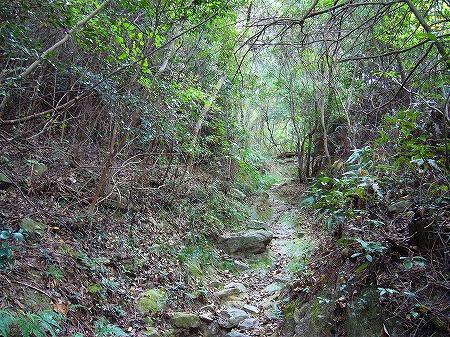 天霧城跡への山道