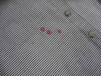 P1030709_convert_20110619214023.jpg
