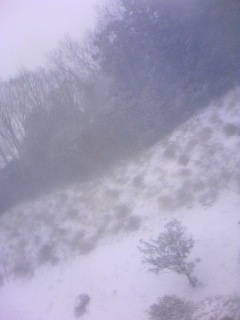 今朝の雪景色2