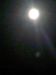 今夜は満月!