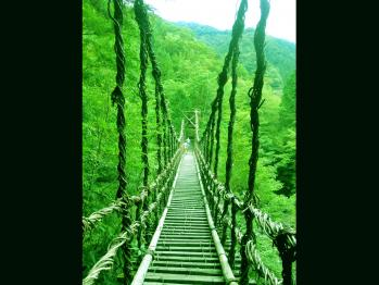 かずら橋_1600×1200