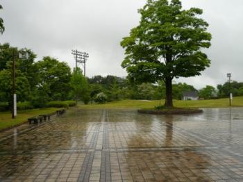 信楽運動公園06