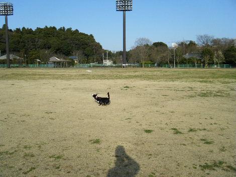 2010_03300045.jpg