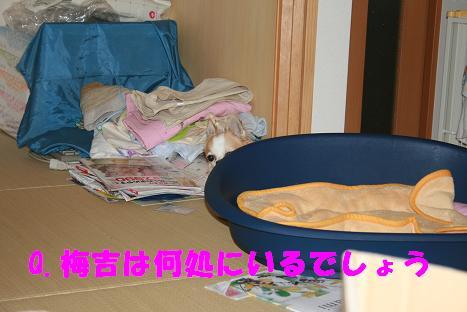 20090923_14.jpg