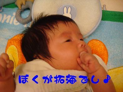 20091003_3.jpg