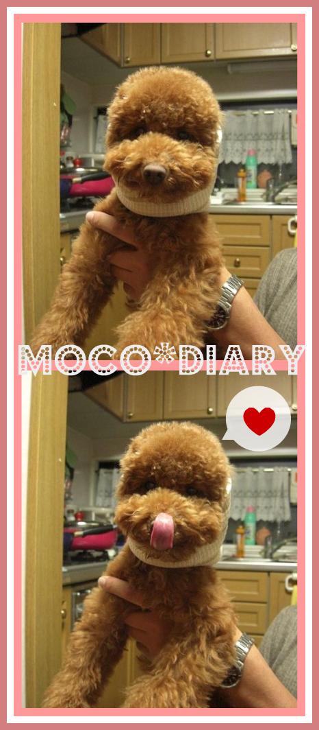 moco eat