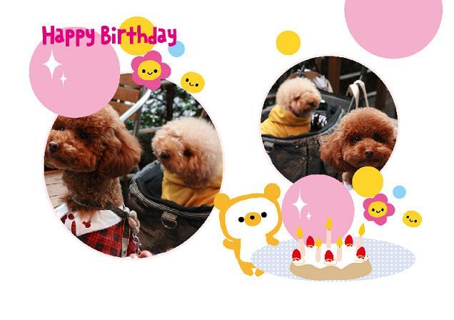 birthday moca4