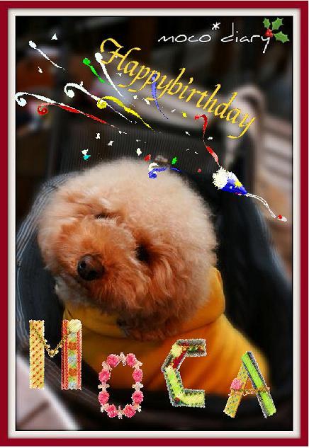 birthday moca1