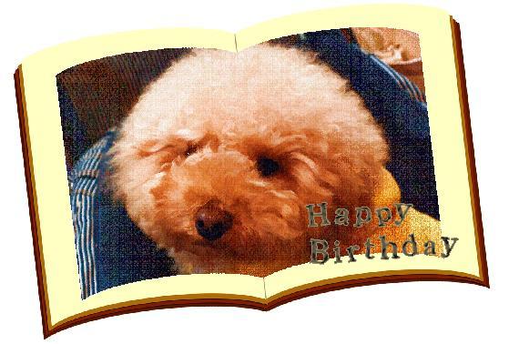 birthday moca2