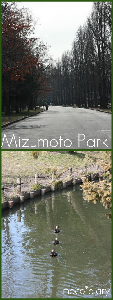 2010.2.8 mizumoto