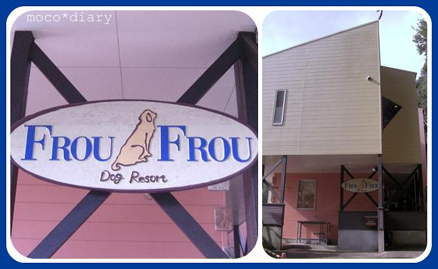 dogrsort froufrou