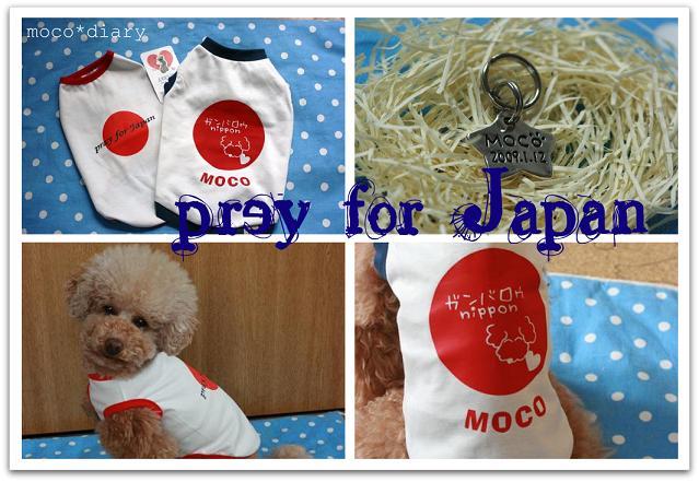 prey for japan