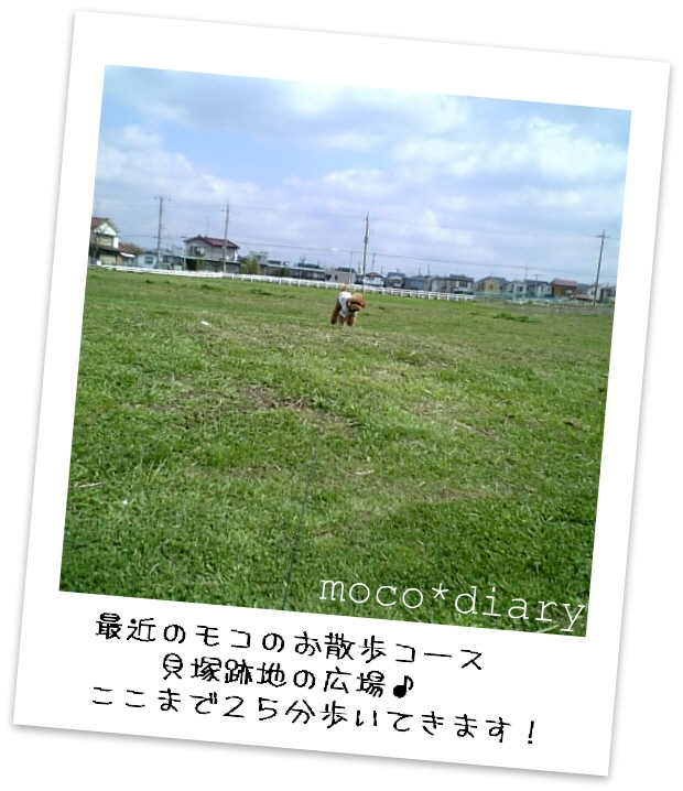 DVC00185.jpg