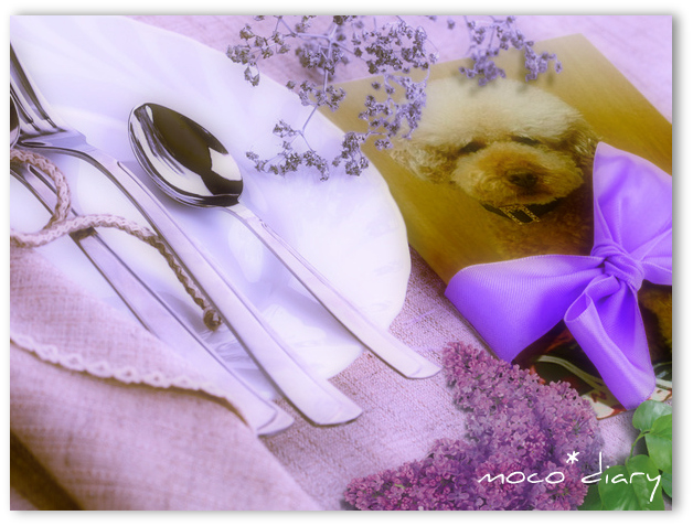 photofacefun_com_bGghND_1309262242.jpg