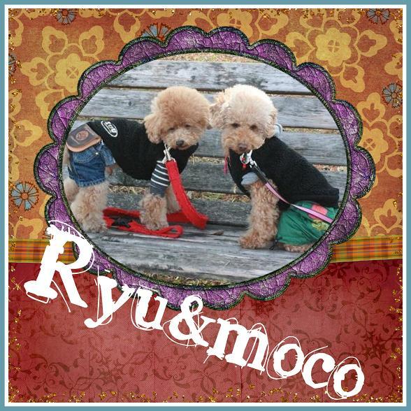 ryumoco3.jpg