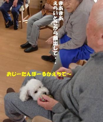 おじいちゃんとみゆA