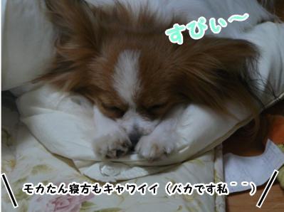 可愛い寝方♪