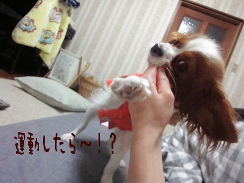 001_20091222230503.jpg