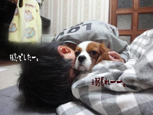 001_20100104223133.jpg