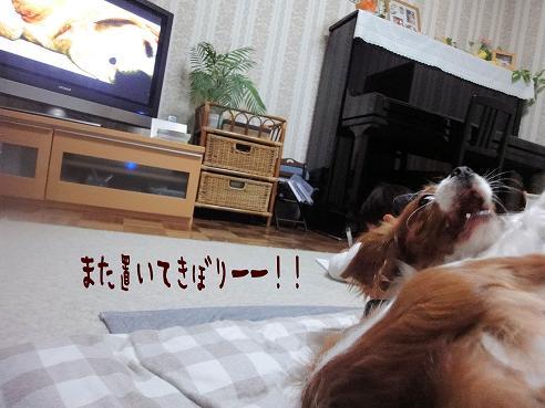 001_20100110230408.jpg