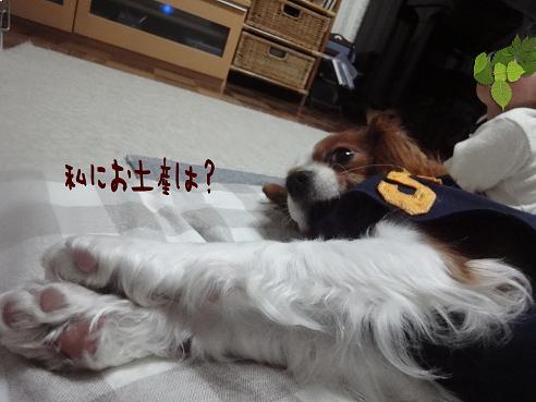 002_20100110230408.jpg
