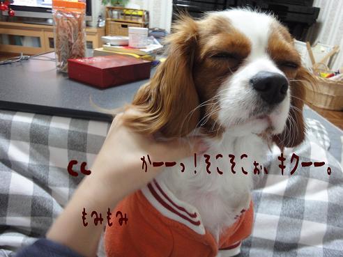 003_20091217215120.jpg