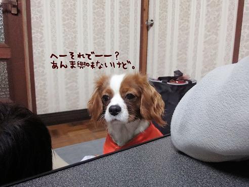 003_20091222230502.jpg