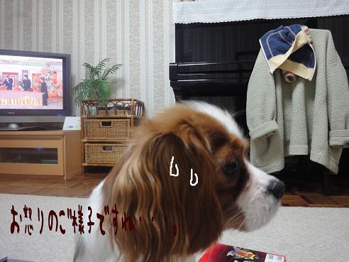 006_20100114223843.jpg
