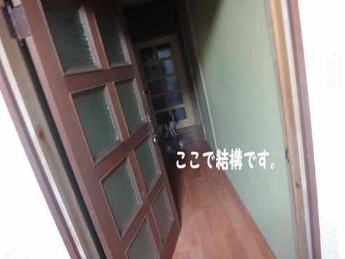 008_20091204224104.jpg
