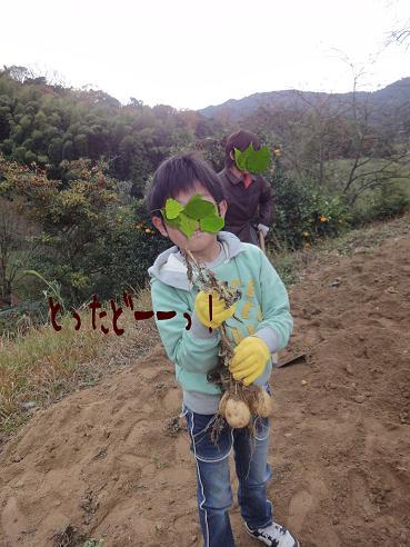008_20091223223651.jpg